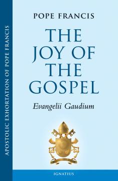 EVANGELII_GAUDIUM3-235x359